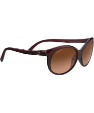 Serengeti 8430 sluina sluneční brýle