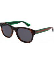 Gucci Pánská gg0003s 003 sluneční brýle