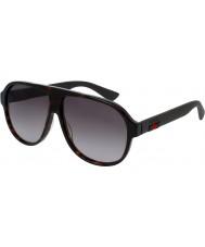 Gucci Pánská gg0009s 003 sluneční brýle