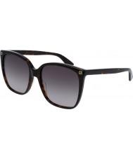 Gucci Dámské gg0022s 003 sluneční brýle