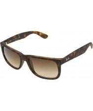 RayBan Rb4165 55 Justin gumový světlo tortoiseshell 710-13 sluneční brýle