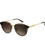 Carrera Pánská Carrera 126 SCN-mailem ha Havana zlaté sluneční brýle