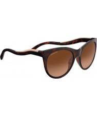 Serengeti 8567 valentina želízka sluneční brýle