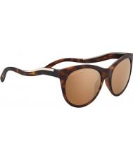 Serengeti 8569 valentina želva sluneční brýle