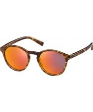 Polaroid Pld6013-s ppt oz blond Havana polarizované sluneční brýle