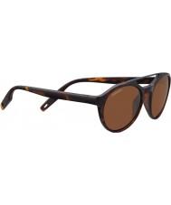 Serengeti 8595 sluneční brýle leandro korytnačka