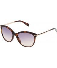 Furla Dámy Stella su4961-04ap žluté havanově tmavě hnědé sluneční brýle