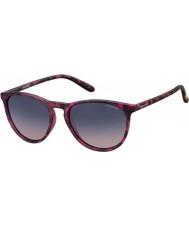Polaroid Pld6003-n Srr Q2 havana fuchsie polarizované sluneční brýle