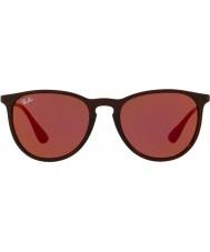 RayBan Erika rb4171 54 6339d0 sluneční brýle