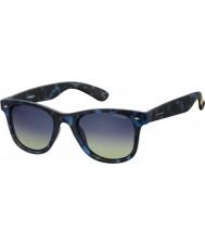Polaroid sec Pld6009 nm Z7 Havana modré polarizované sluneční brýle
