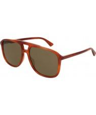 Gucci Pánské sluneční brýle gg0262s 002 58