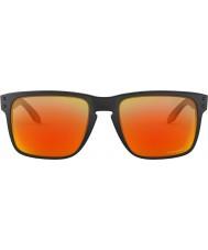 Oakley Oo9417 59 04 holbrook xl sluneční brýle
