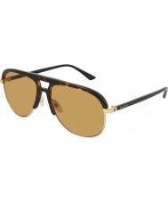 Gucci Pánské sluneční brýle gg0292s 004 60