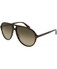 Gucci Pánské sluneční brýle gg0119s 002