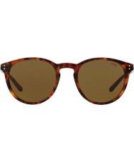 Polo Ralph Lauren Pánské ph4110 50 501773 sluneční brýle