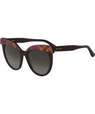ETRO Dámské sluneční brýle et647s-800