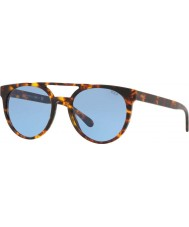 Polo Ralph Lauren Pánské sluneční brýle ph4134 53 530972