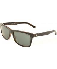 Polo Ralph Lauren Ph4098 57 ležérní žijící top black na Jerry želva 526087 sluneční brýle