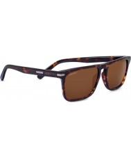 Serengeti Carlo tmavý Havana ovladače sluneční brýle